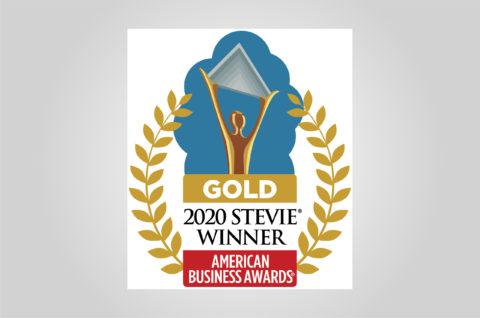 Gold 202 Stevie Winner American Business Awards